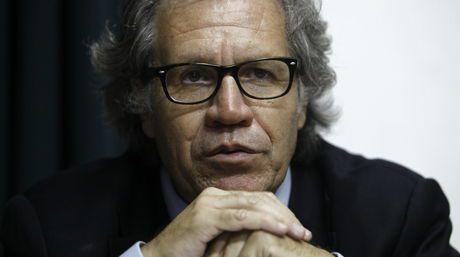 Luis Almagro, secretario general de la OEA / EFE