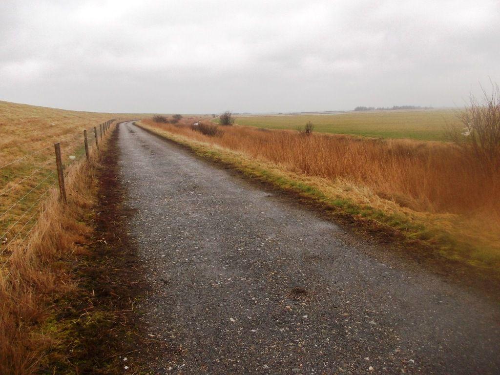 Deich links, Wind und Regen von hinten = Rückweg