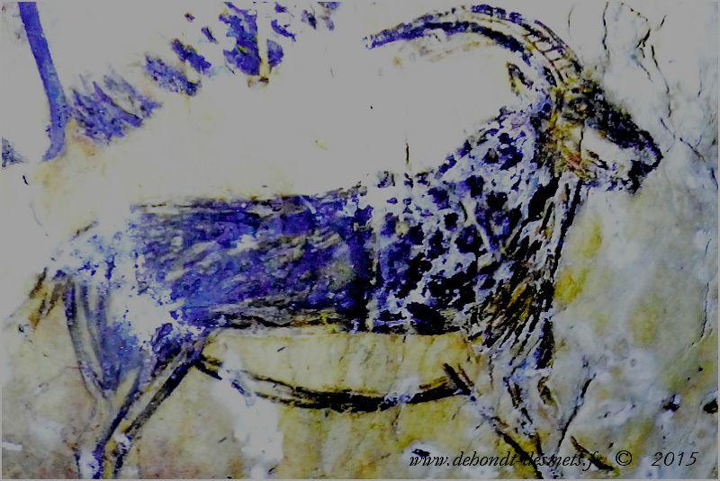 Moins nombreuse que celles de chevaux, les peintures de bouquetins sont pourtant présentes dans le bestiaire des hommes de la préhistoire.