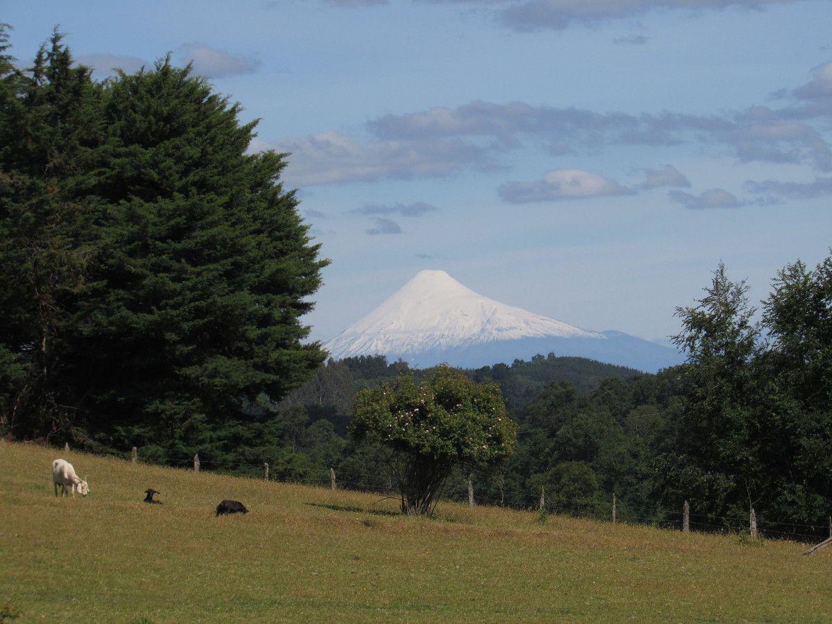 Osorno región de los lagos