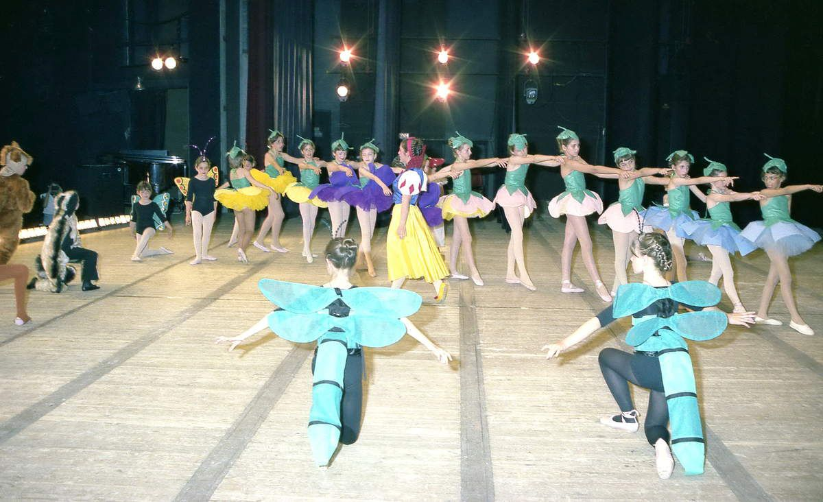 Les Ballets nivernais