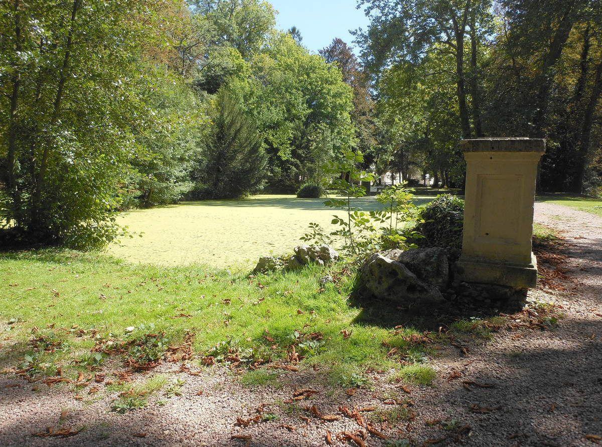 A remarquer, ce qui reste des serres situées vers l'ex tennis du Parc Saint-Léger