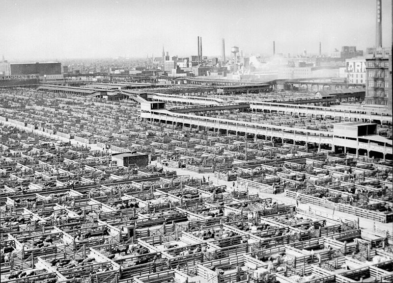 Les Union Stock Yards en 1947 (Source : Wikimedia Commons)