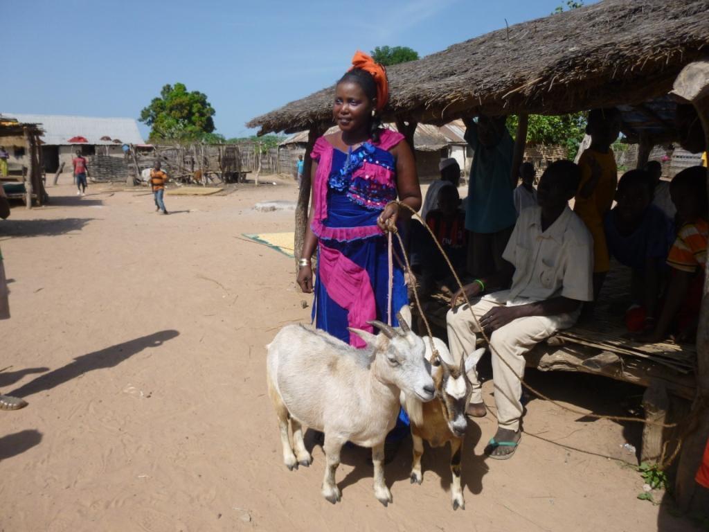 Jeune femme avec ses animaux achetés suite au projet à Médina Sambel