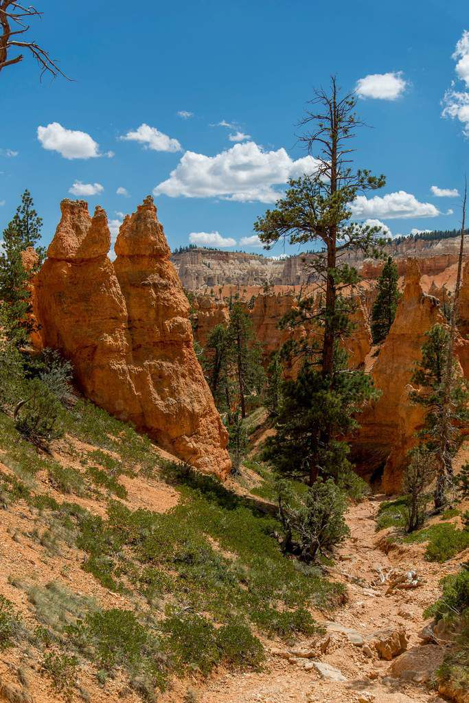 Bryce Canyon National Park - Road-Trip 2