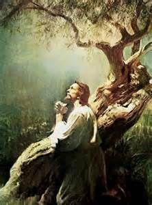 La Palabraa de Dios hoy martes XIV del T.o. 07.07.2011:Lecturas del día: Gén:32,22-32&#x3B;Sal 16&#x3B; Mt 9,32-38: Santos: Fermín&#x3B;Benedicto XI&#x3B; María Romero Meneses&#x3B; Bto. Pedro To Rot: 2ª  del  salterio.