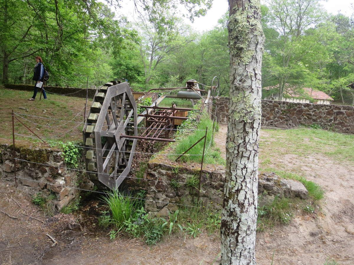 une belle promenade ...pour finir dans cette hutte aux sorcières, car à cette époque là, les croyances et les mauvais sorts, faisaient partie de la vie de tous les jours