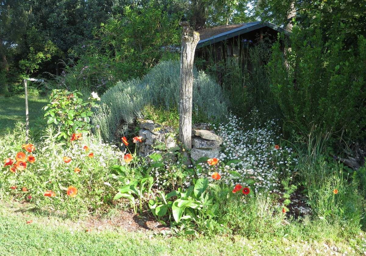 La cabane.... avec son fouillis rocailleux,  à la mi mai. il fait bon s'asseoir, presque ivre, des senteurs du seringat