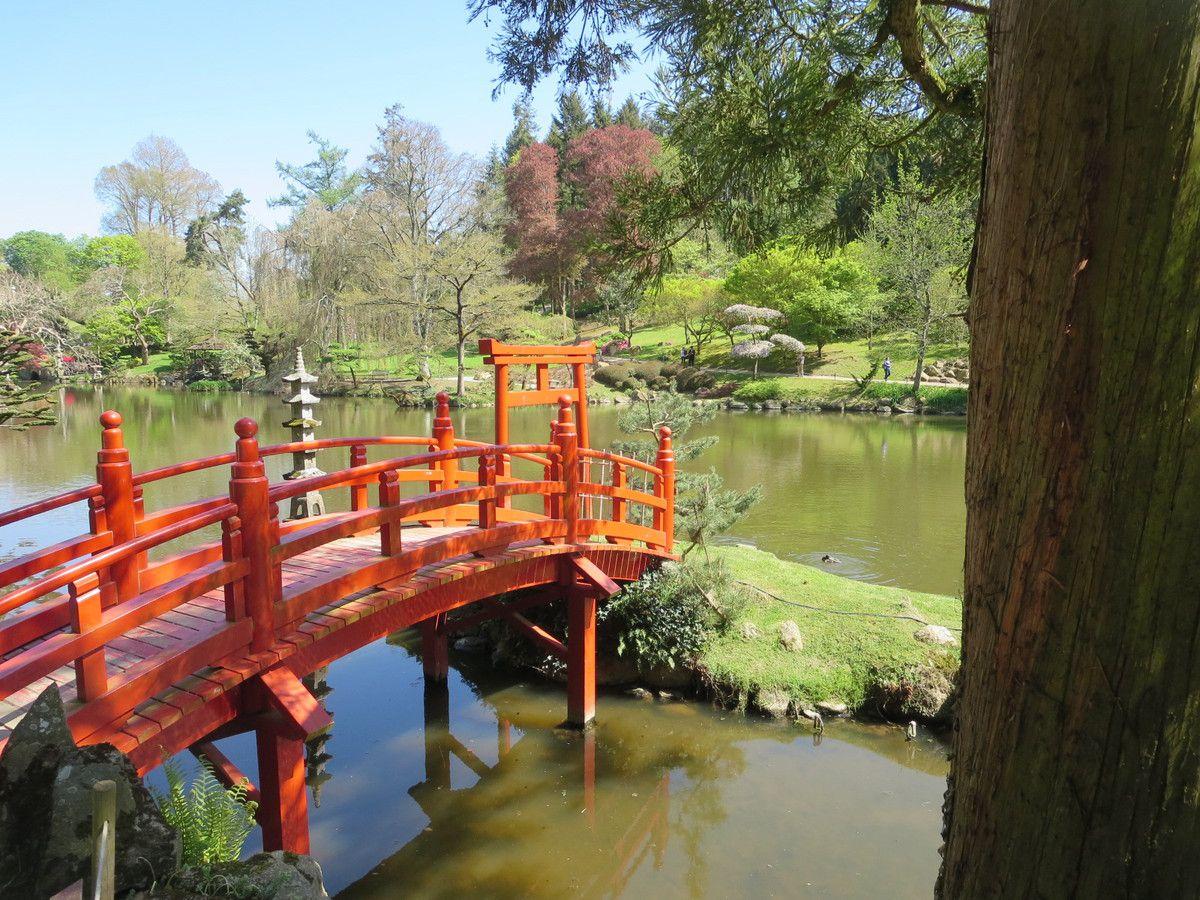 Le plus grand jardin Japonais d\'Europe - passion