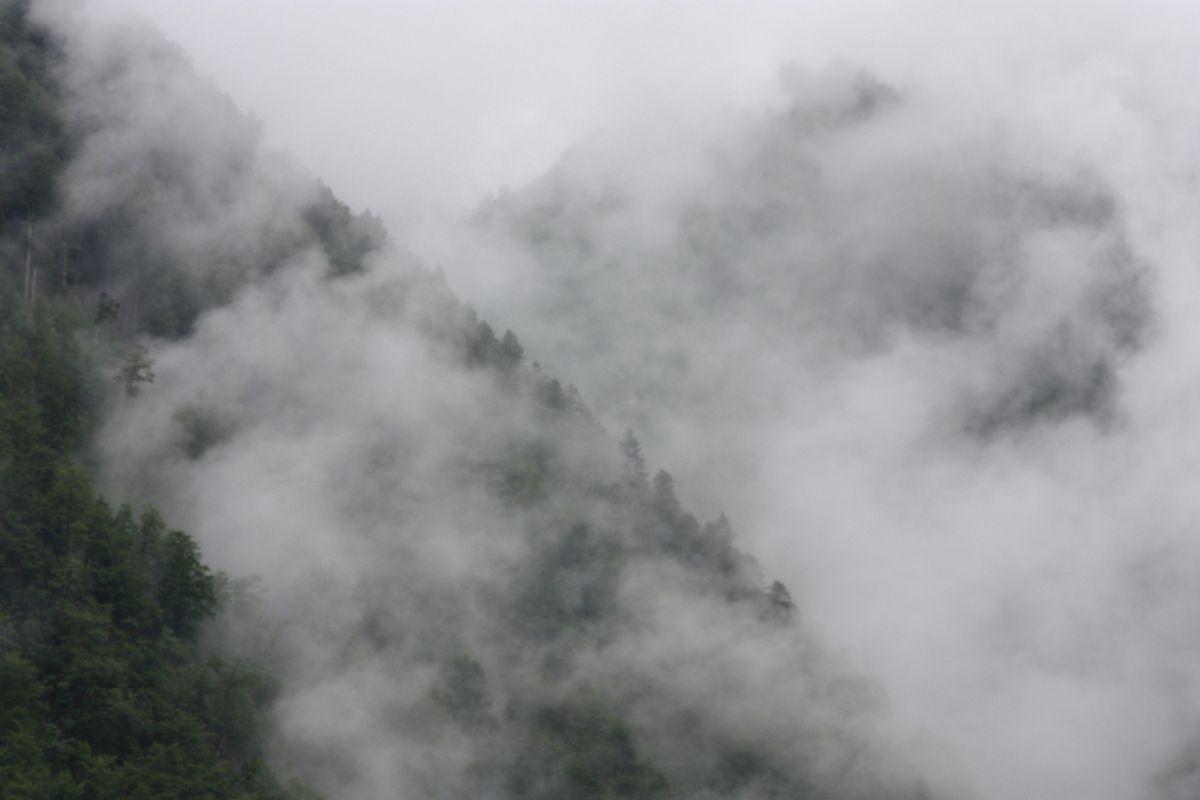 Brouillard et humidité.