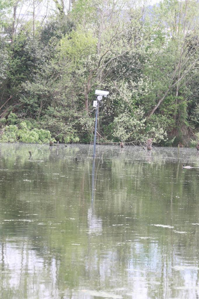 Deux caméras. Une sur une zone saumâtre et une autre sur étang eau douce. Elles sont reliées au centre d'accueil qui est à proximité.