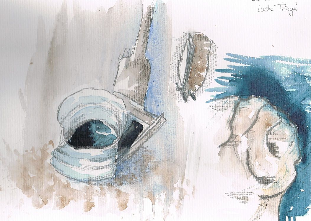 Dans cette ancienne carrière des chiroptères plus frileux se sont réfugiés. Les rhinolophes et les murins à oreilles échancrées.