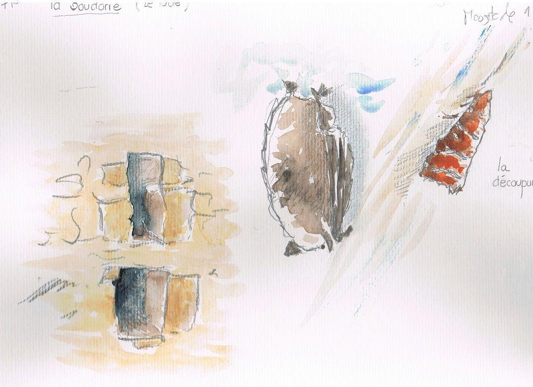 Dans un amphithéâtre autour de maisons.  parmi des papillons ( ici la découpure) un murin à moustache se repose.