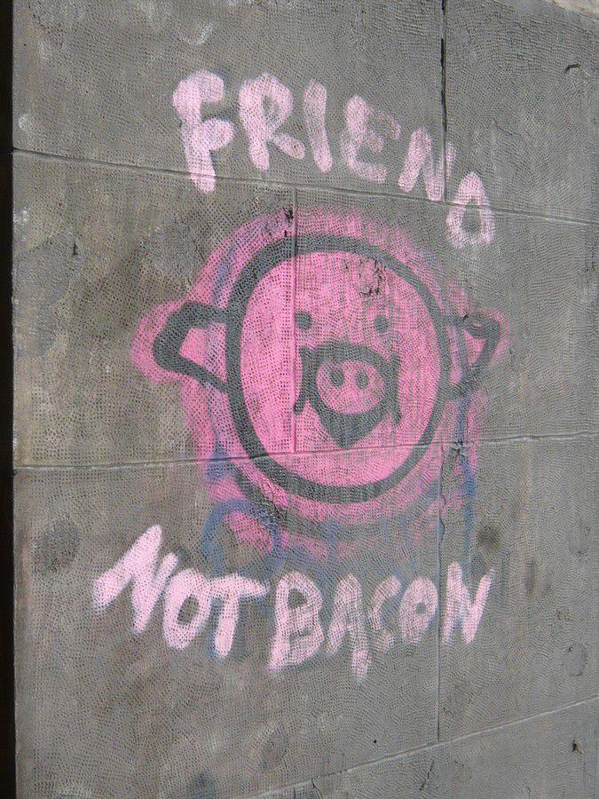 """""""Friend not bacon"""""""