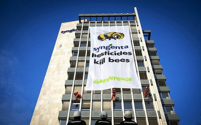 Mortalité des abeilles : on connait maintenant le coupable