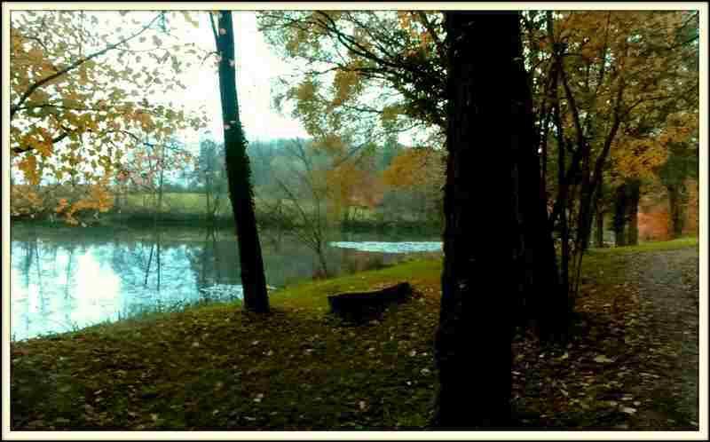 L'étang - Evans - Jura