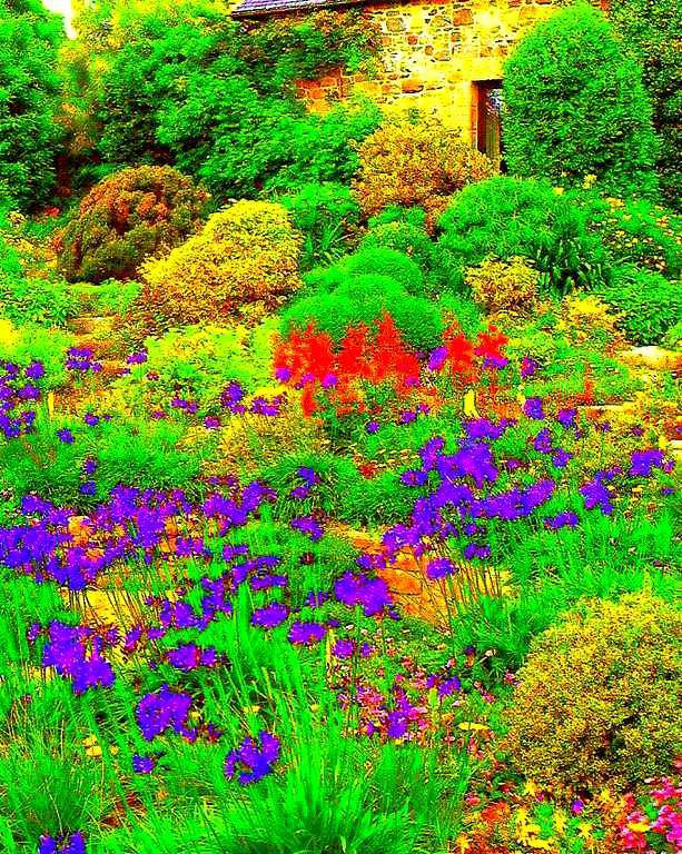 Gifs - tubes - images - jardin