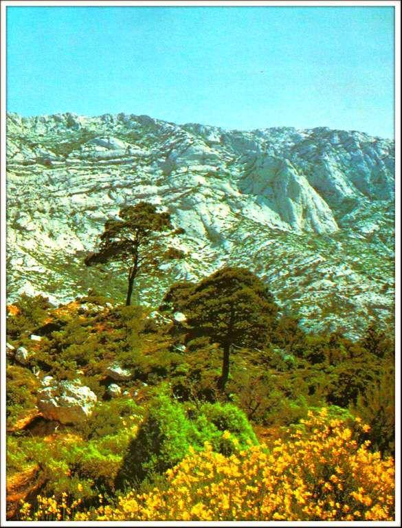 montagne Sainte-Victoire - Aix-en-Provence