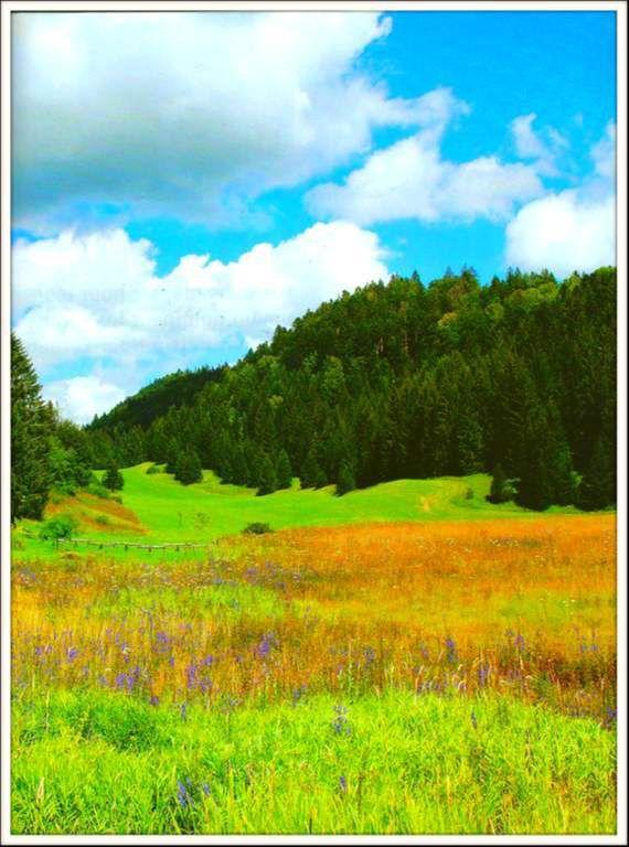 Prénovel - La Combe du Nanchez - Jura