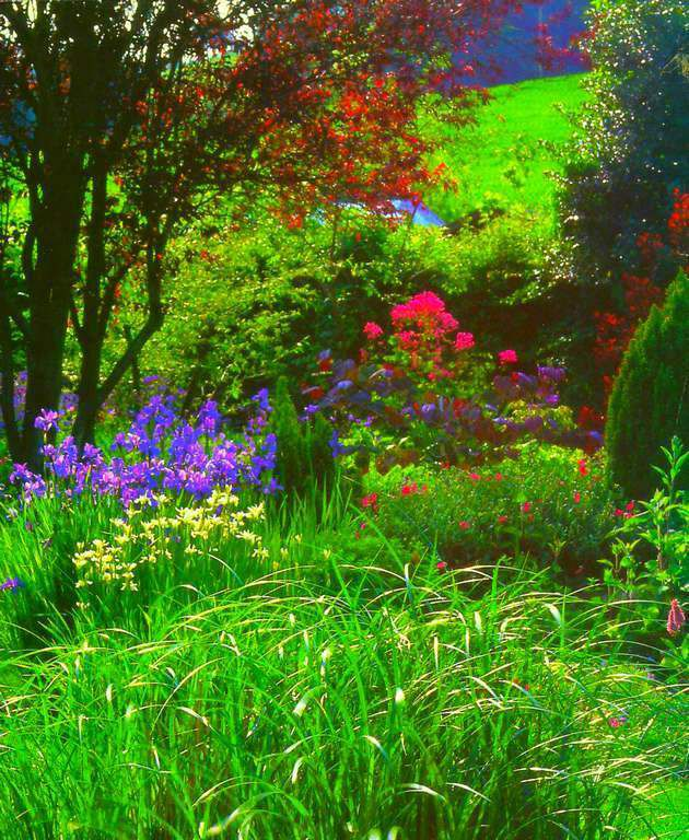 Gifs - tubes - images - jardin/parc