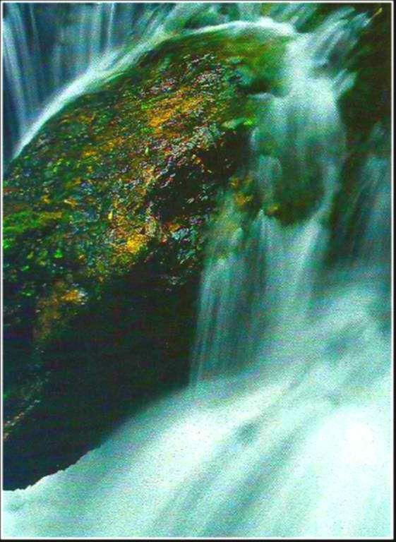 La Loue et ses eaux vives - Jura