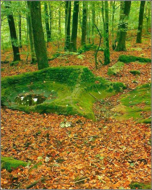 La pierre aux sacrifices - Raddon - Haute-Saône