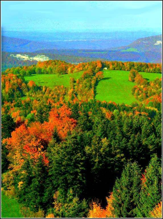 Haut-Doubs - montagne du Jura - environ de Maîche