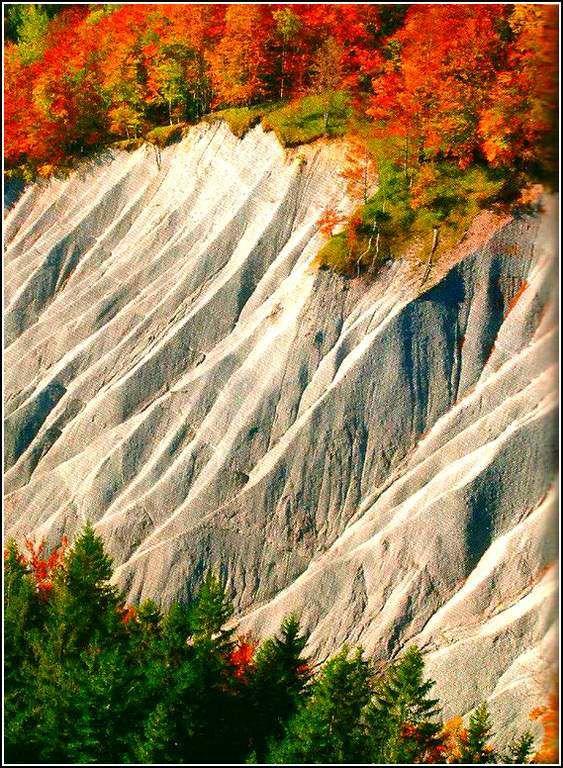 Foncine - Jura - les roches calcaires grises