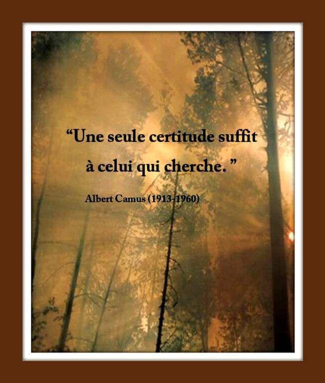 Citation &quot&#x3B;certitude&quot&#x3B; de Albert Camus