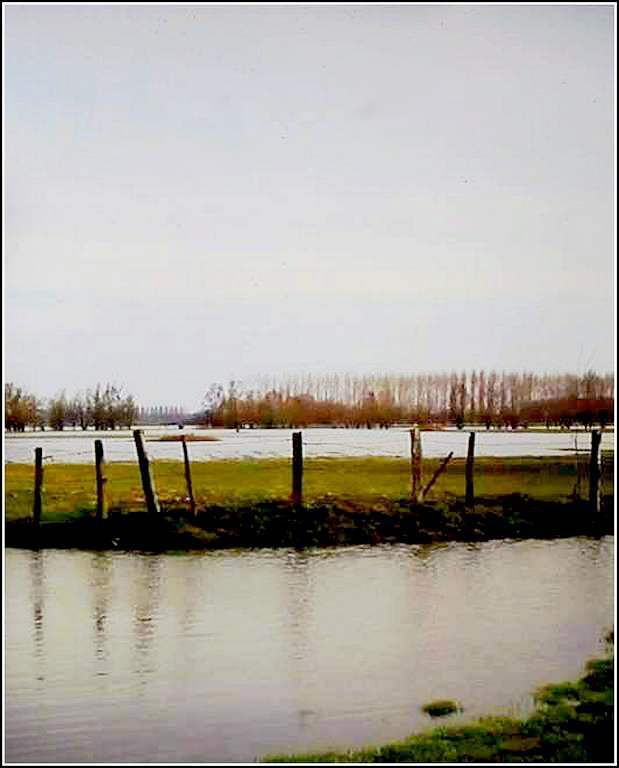 paysage hiver - campagne comtoise