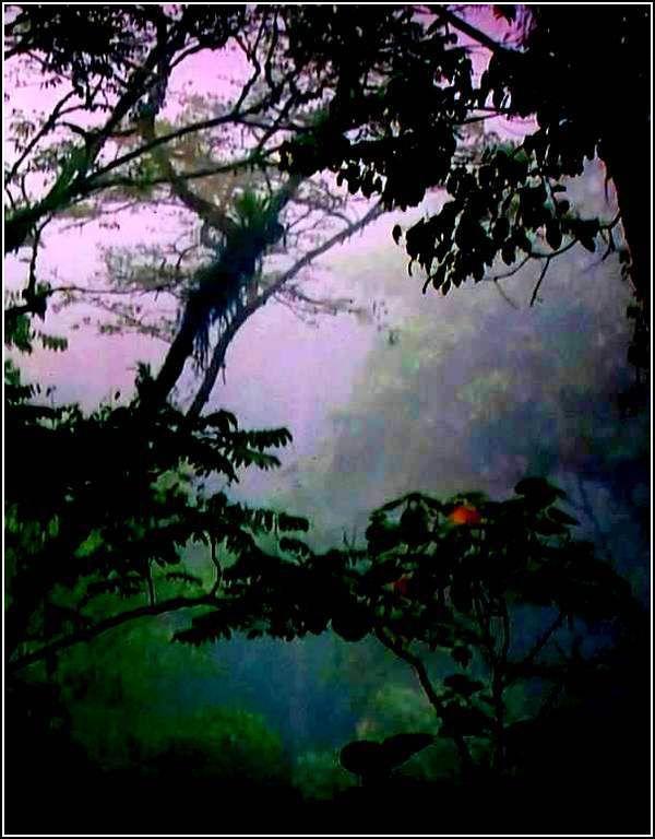 Images nature - fantastique
