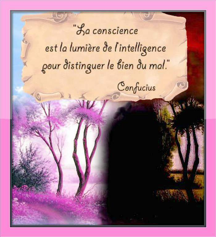 Citation &quot&#x3B;conscience de Confucius
