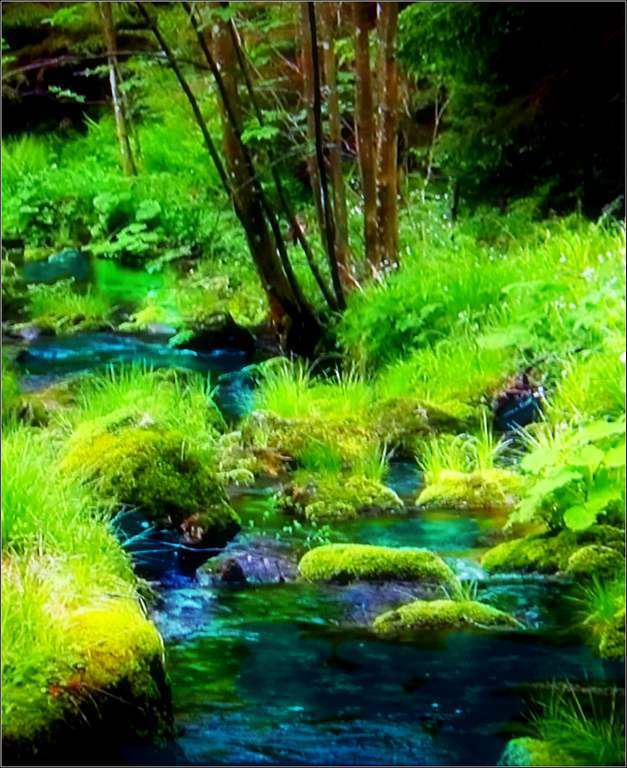 Images nature