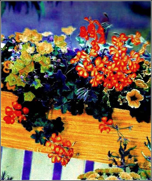 Fenêtres et balcons fleuris