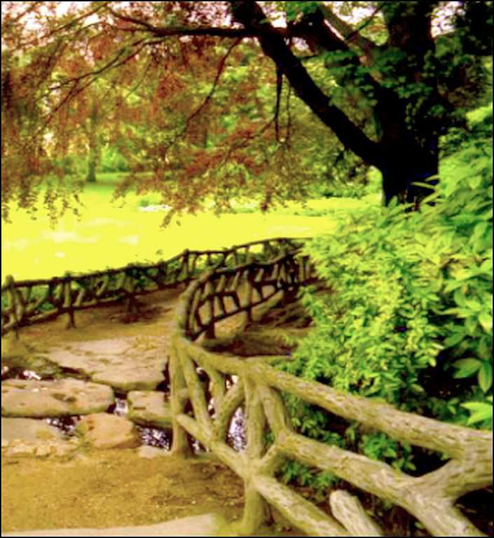 Jacques Prévert - poète - &quot&#x3B;Le jardin&quot&#x3B;