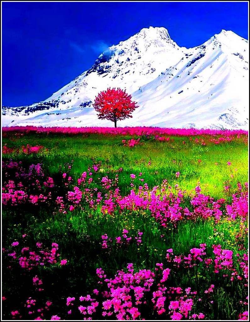 Les couleurs en images - paysage