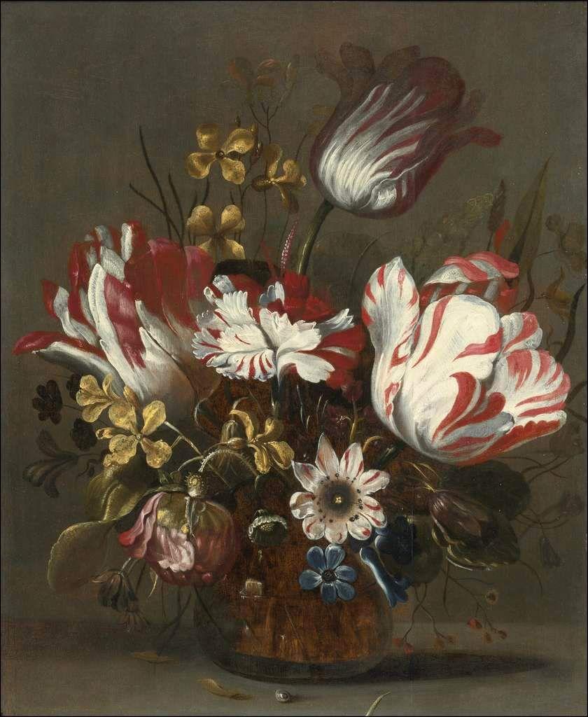 tulipes et autres fleurs