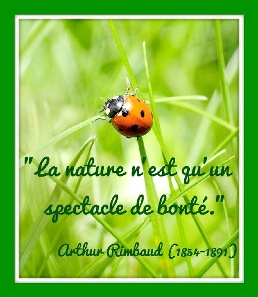 Citation &quot&#x3B;nature&quot&#x3B; d'Arthur Rimbaud (1854-1891)