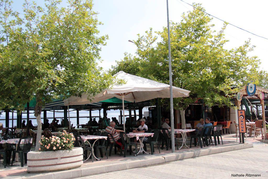 Jardins à thé de Marmara