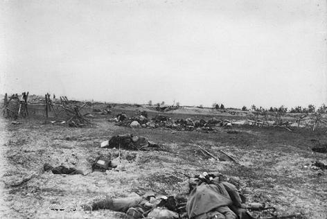 Septembre 1915 - Cadavres dans le secteur de la Main de Massiges - Bataille de Champagne