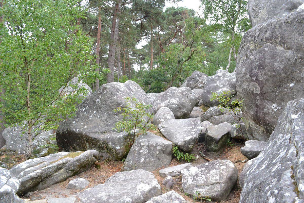 CIRCUIT DES PEINTRES DE BARBIZON 77 (proche de Fontainebleau)