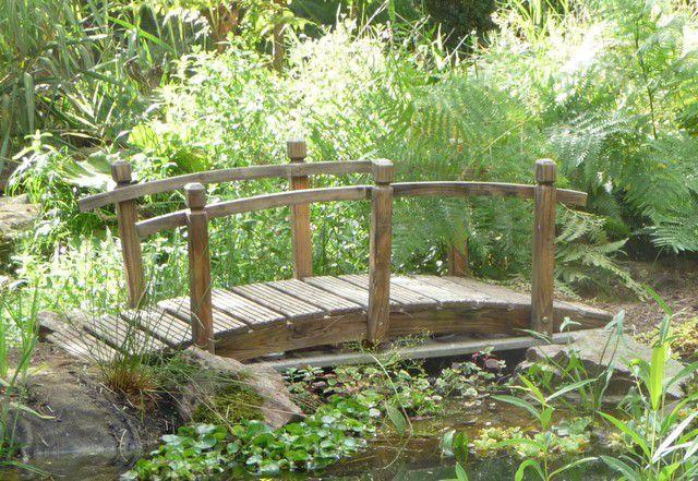 Restauration Du Jardin Deau Le Blog Les Jardins De LY - Bassin de jardin bois 2