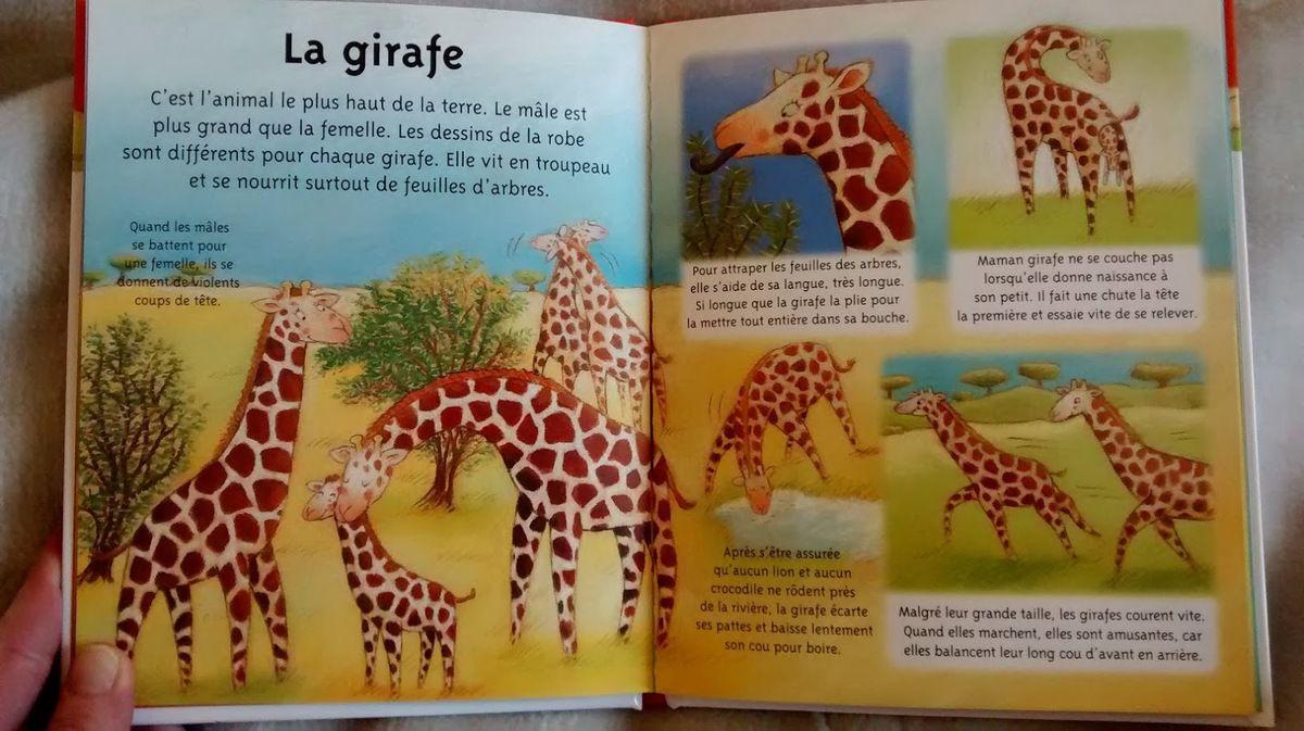 La girafe, petite imagerie Fleurus