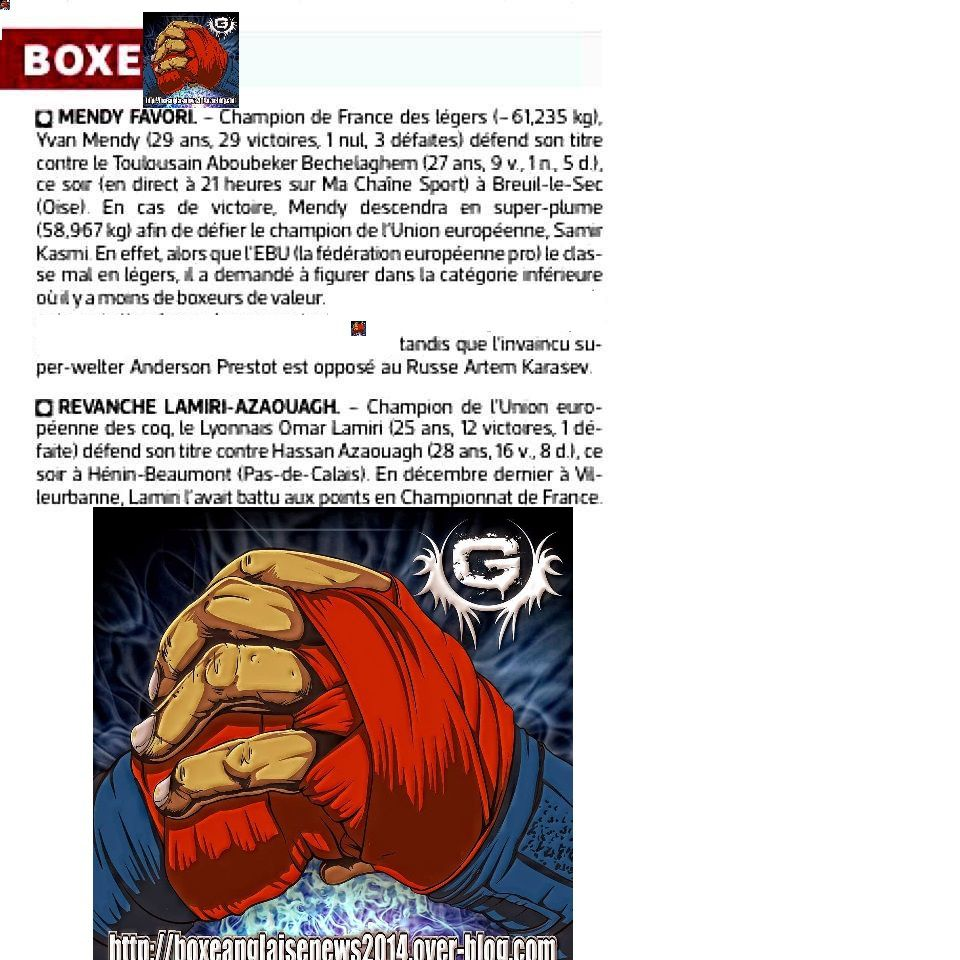 L'article boxe du journal L'EQUIPE du 31/10