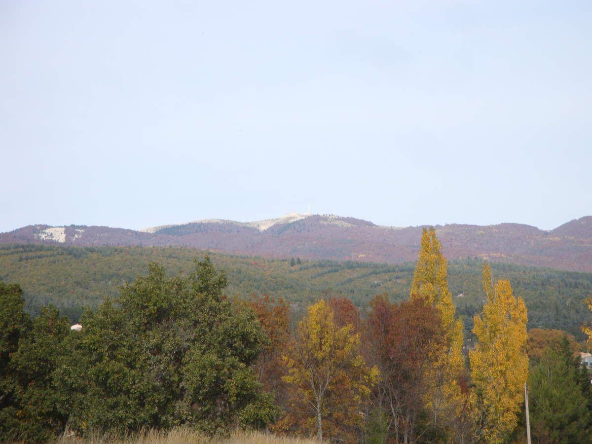 L'automne à la montagne de Lure
