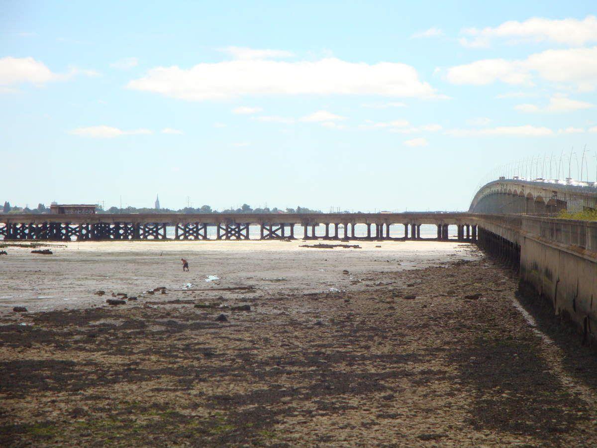 balade en Charente-Maritime en van  VW T4 California