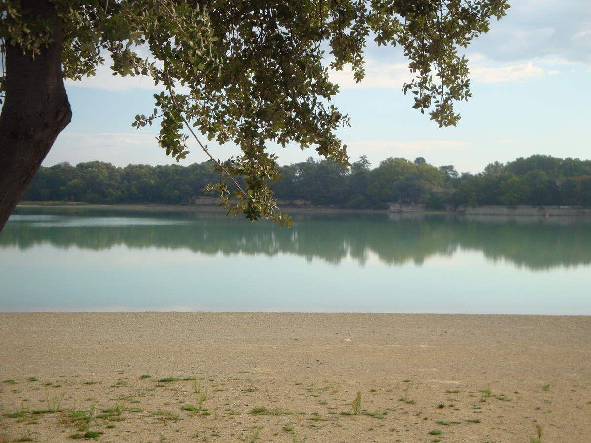 1er meeting Flat 4 Mania à l'étang de La Bonde.