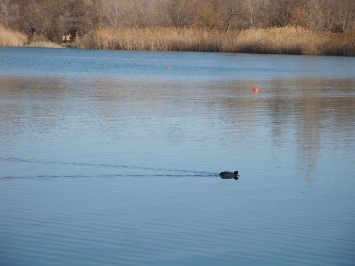 Balade au lac des Vannades