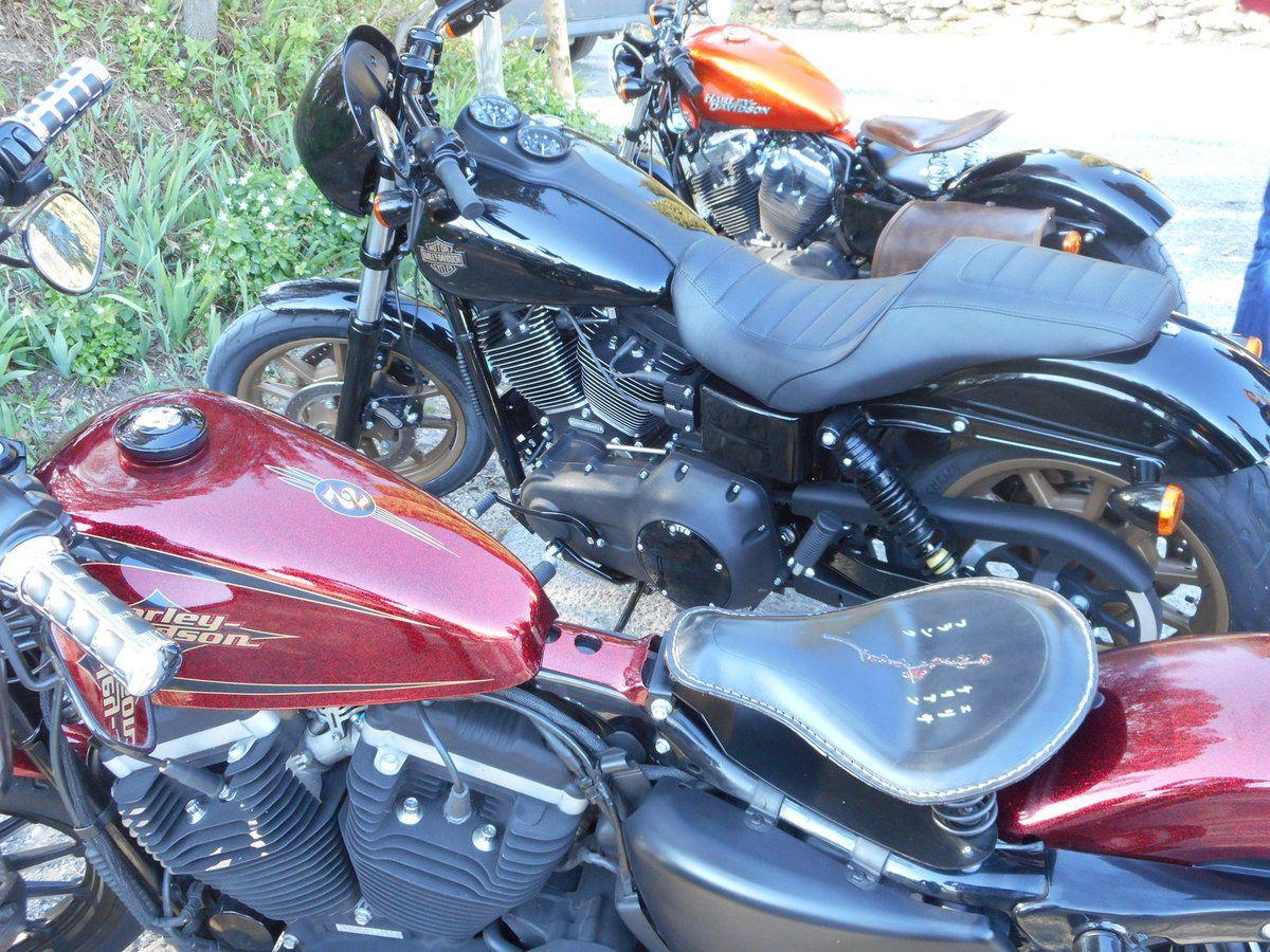 Roussillon et Lourmarin en Harley Davidson 883 carbu