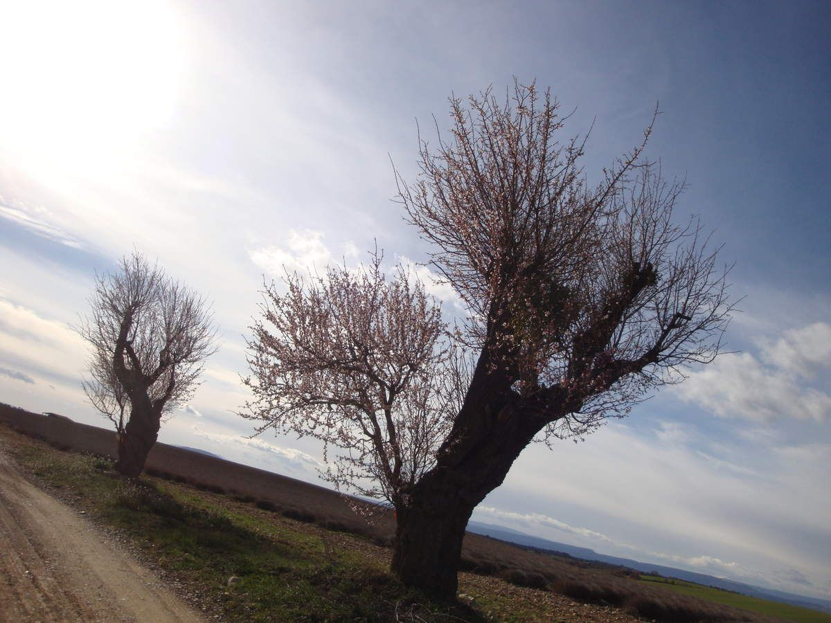 panorama depuis le plateau d'Entrevennes